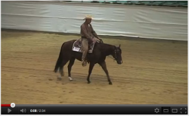 Best of: Oliver Wehnes & Big Rodeo Rooster EWU German Open 2011